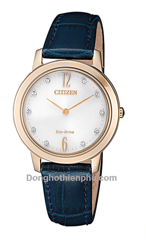 CITIZEN EX1493-13A